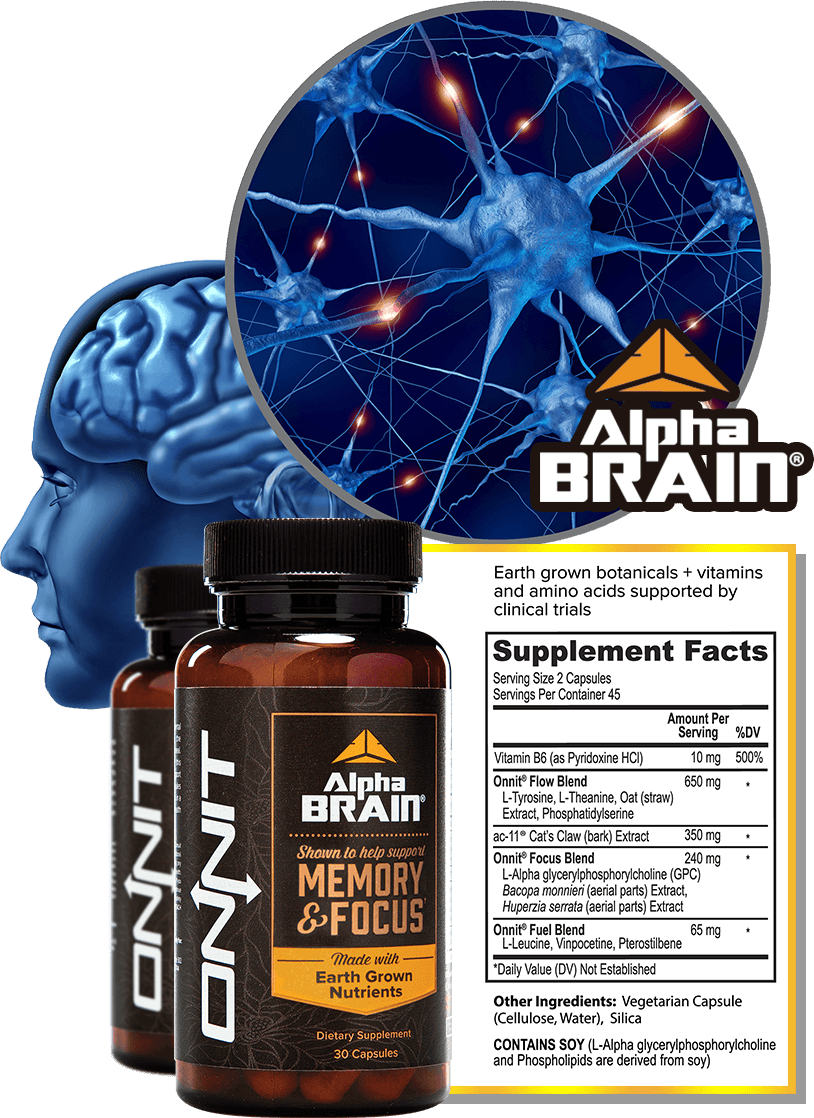 What is Alpha Brain?