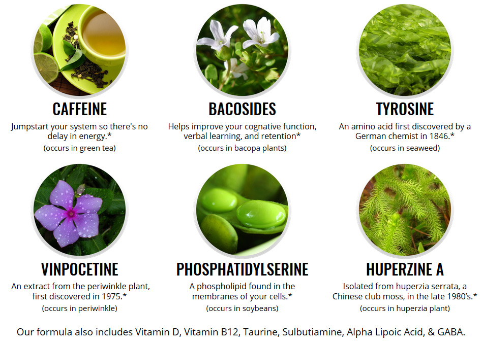 OptiMind Ingredients