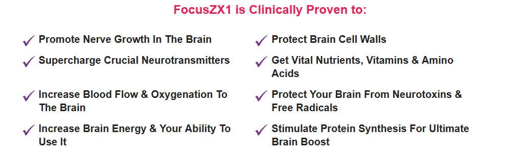 focus zx1 ingredients
